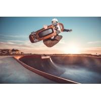 Skateboards Elwing